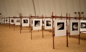 xiang-sha-wan-exhibition-display